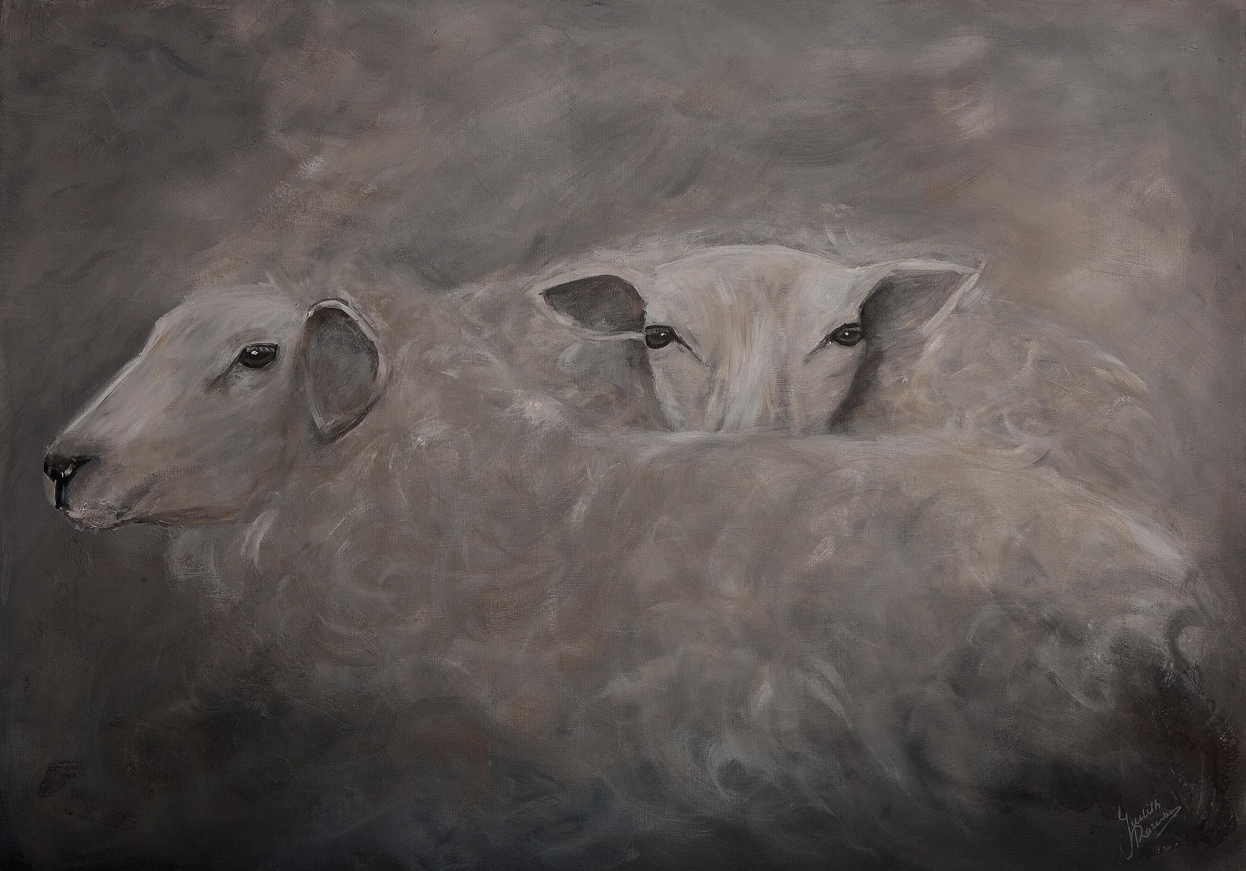 schapen zonder kader.jpg