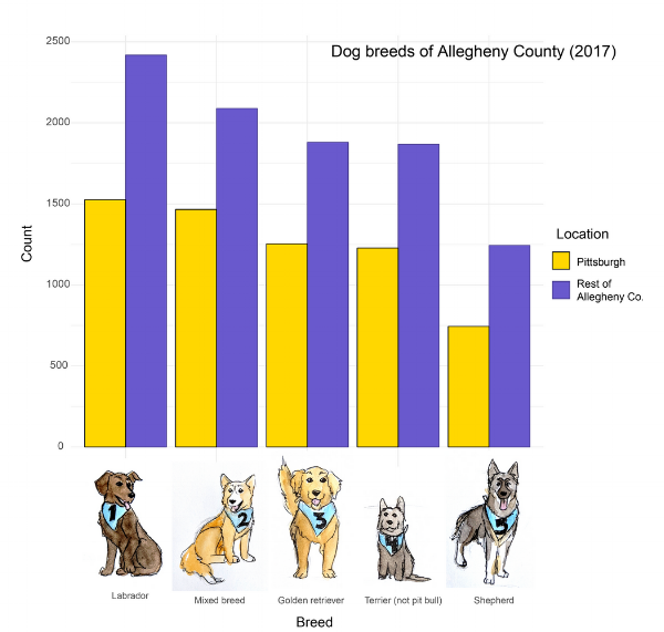 Count of breeds in Allegheny County. Pittsburgh in Steelers colors, of course.