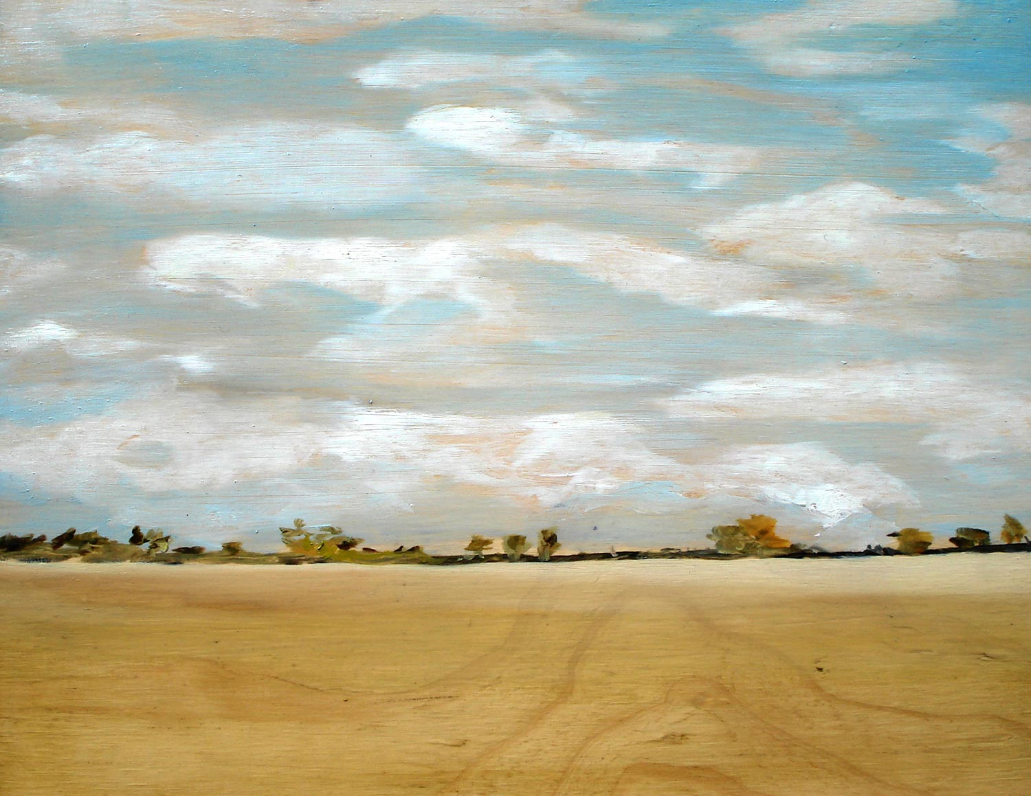 "Title:   "" What I remember from the drive to Cohuna was the long, straight, flat plains and roads. And the mirages.  ""    Medium:  Oil on plywood   Size:  35 x 45cm"