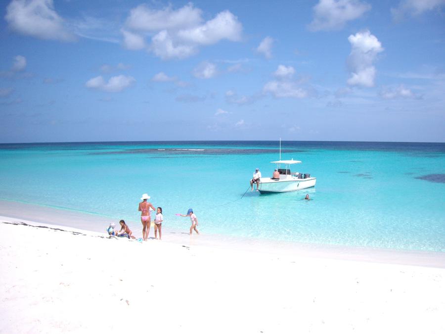 anguilla-1.jpg