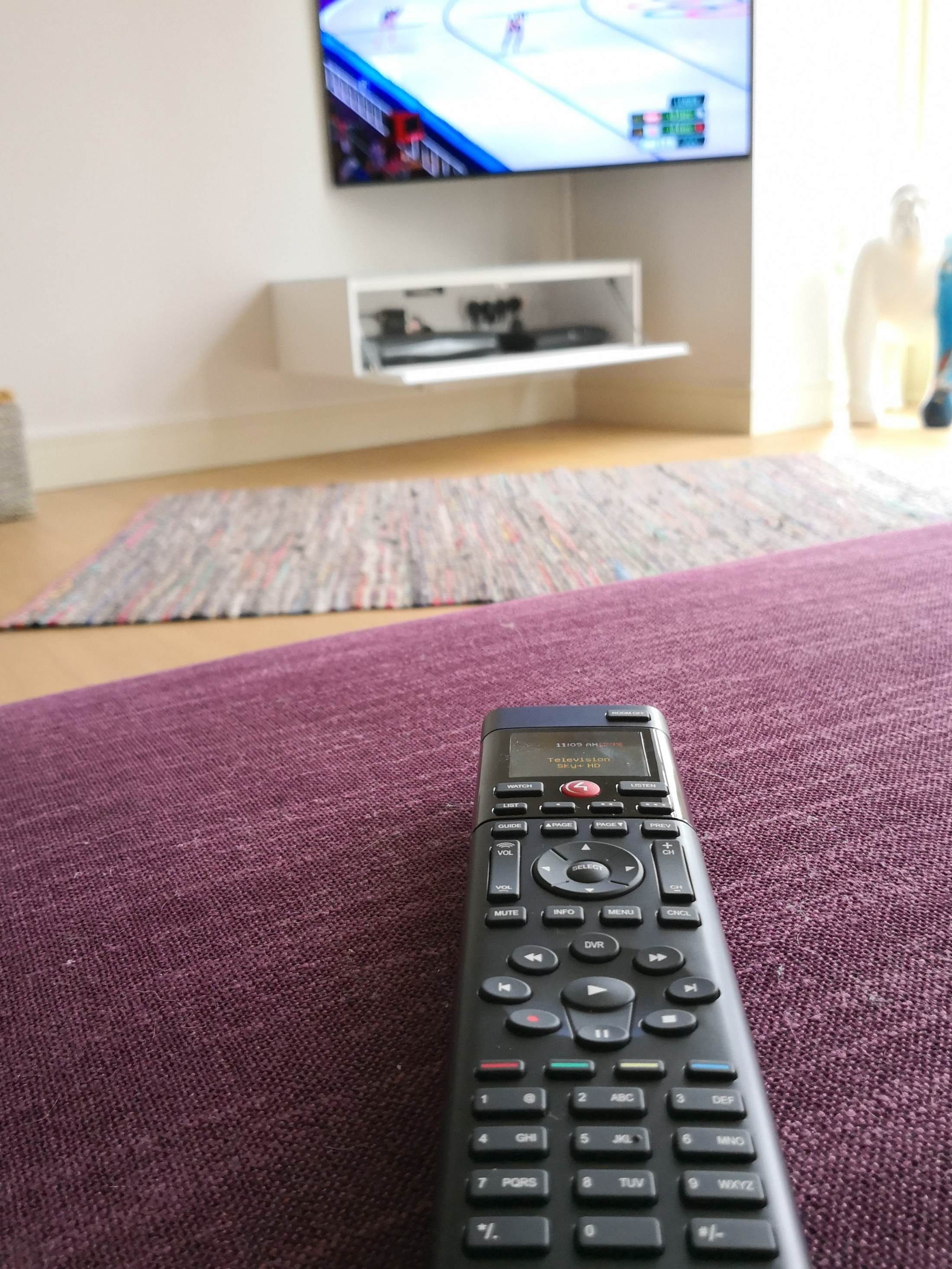 One CONTROL4 remote that can control the projector, Sky box and television.  At the clients discretion other household technologies can be integrated into adn controlled by the system, such as lighting, heating and blinds.