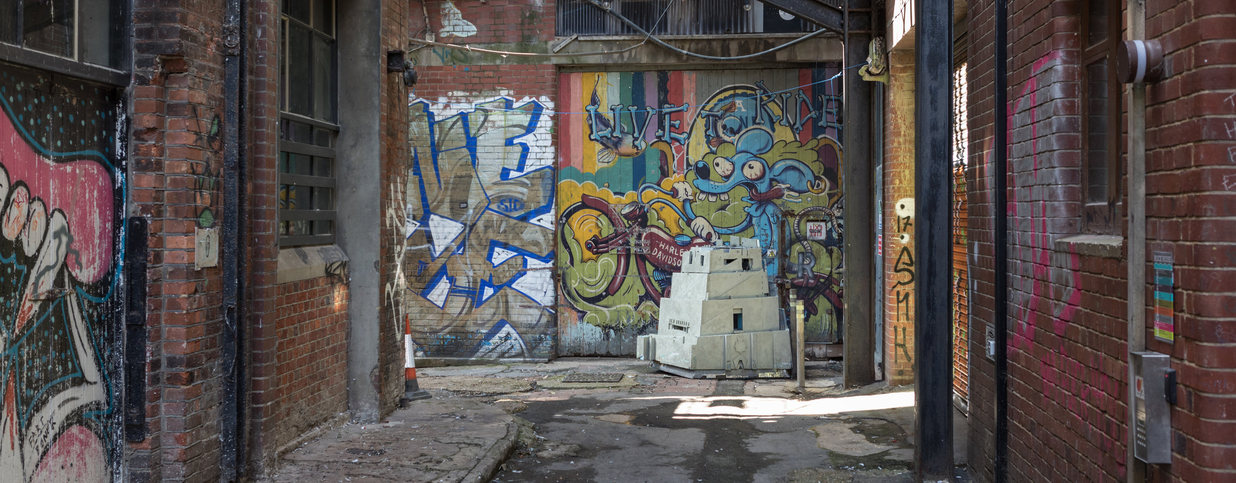 Alley_31-08-17-0096 copy.jpg