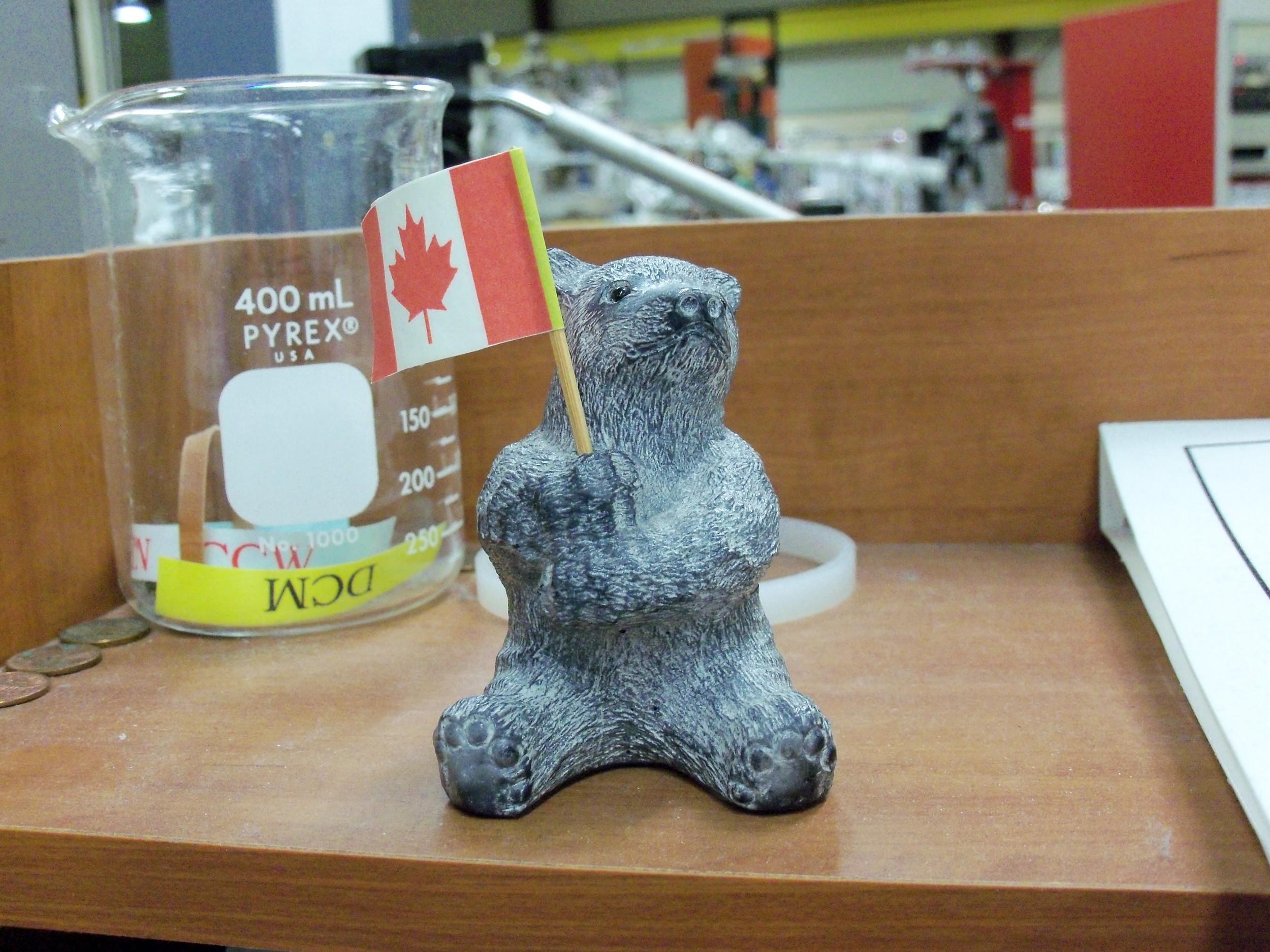 Canadian Bear.jpg