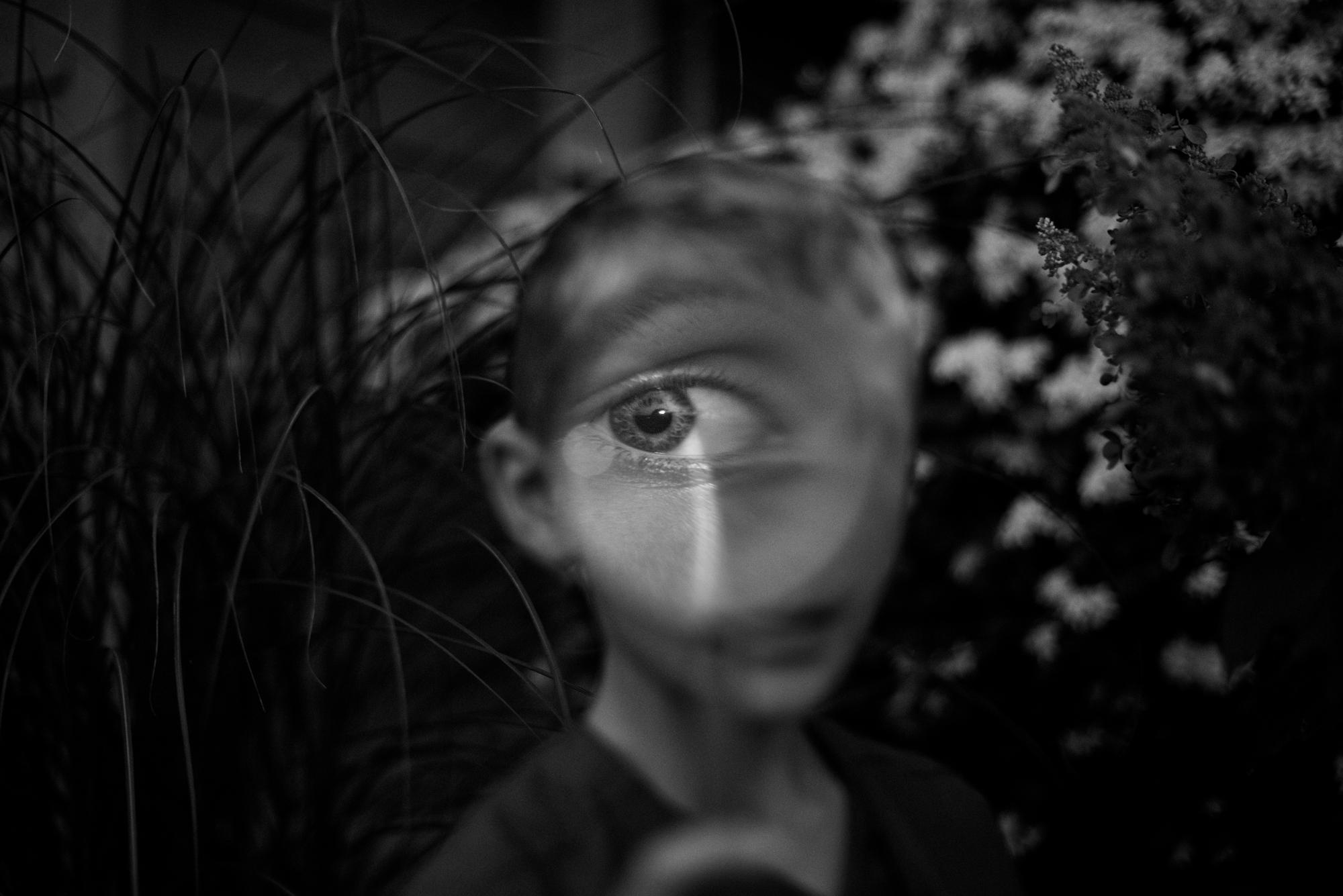 EyeSpy.jpg