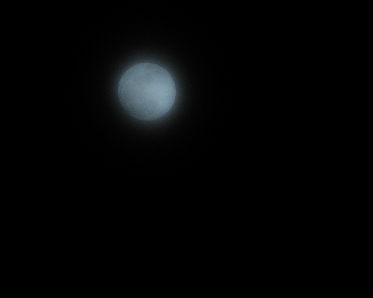 Fuck this moon58.jpg