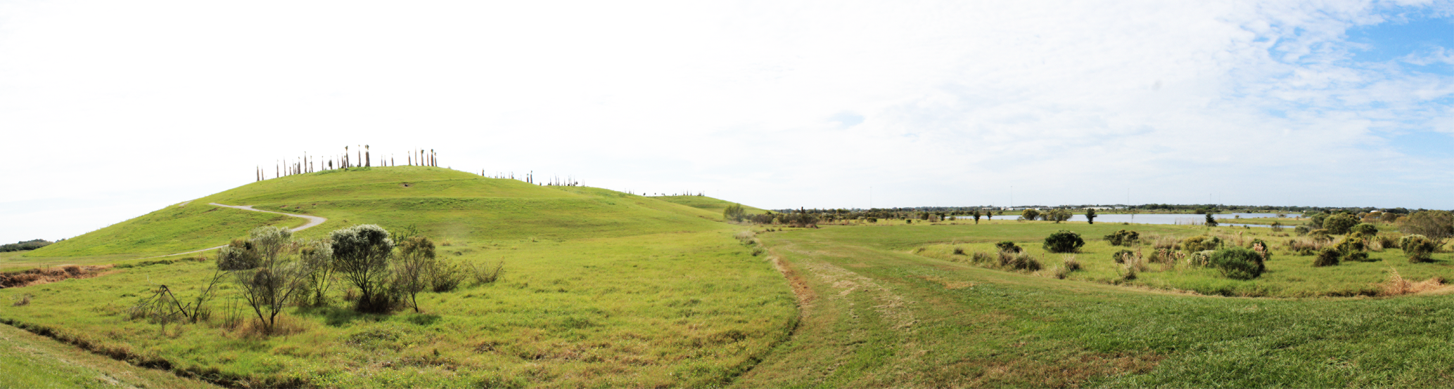 A site Panorama showing the capped mound and flood plain wetlands.