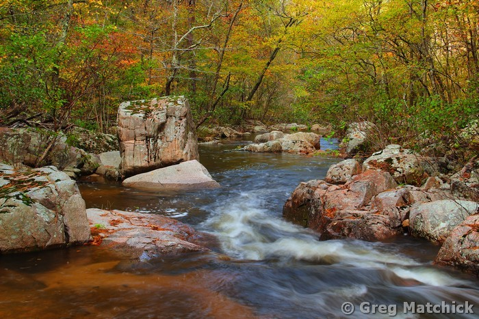 Fall Colors On Pickle Creek 1