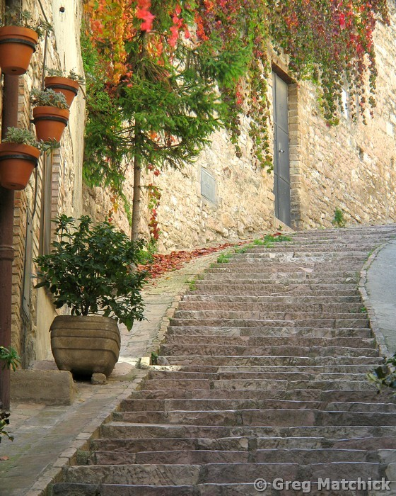 Steps and Red Ivy in Assisi