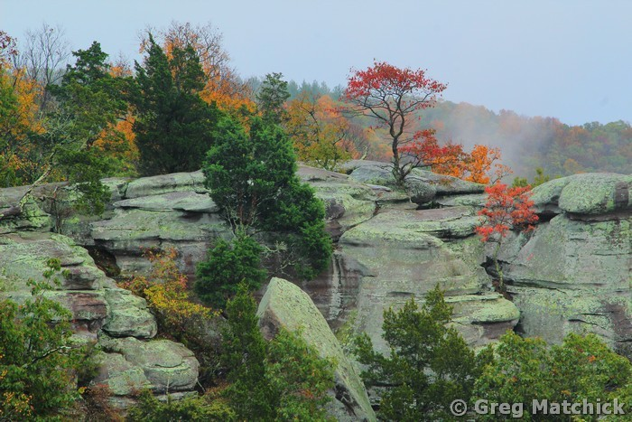 Photographs Of Garden Of The Gods In Shawnee National Forest Southern Illinois Greg Matchick Photography