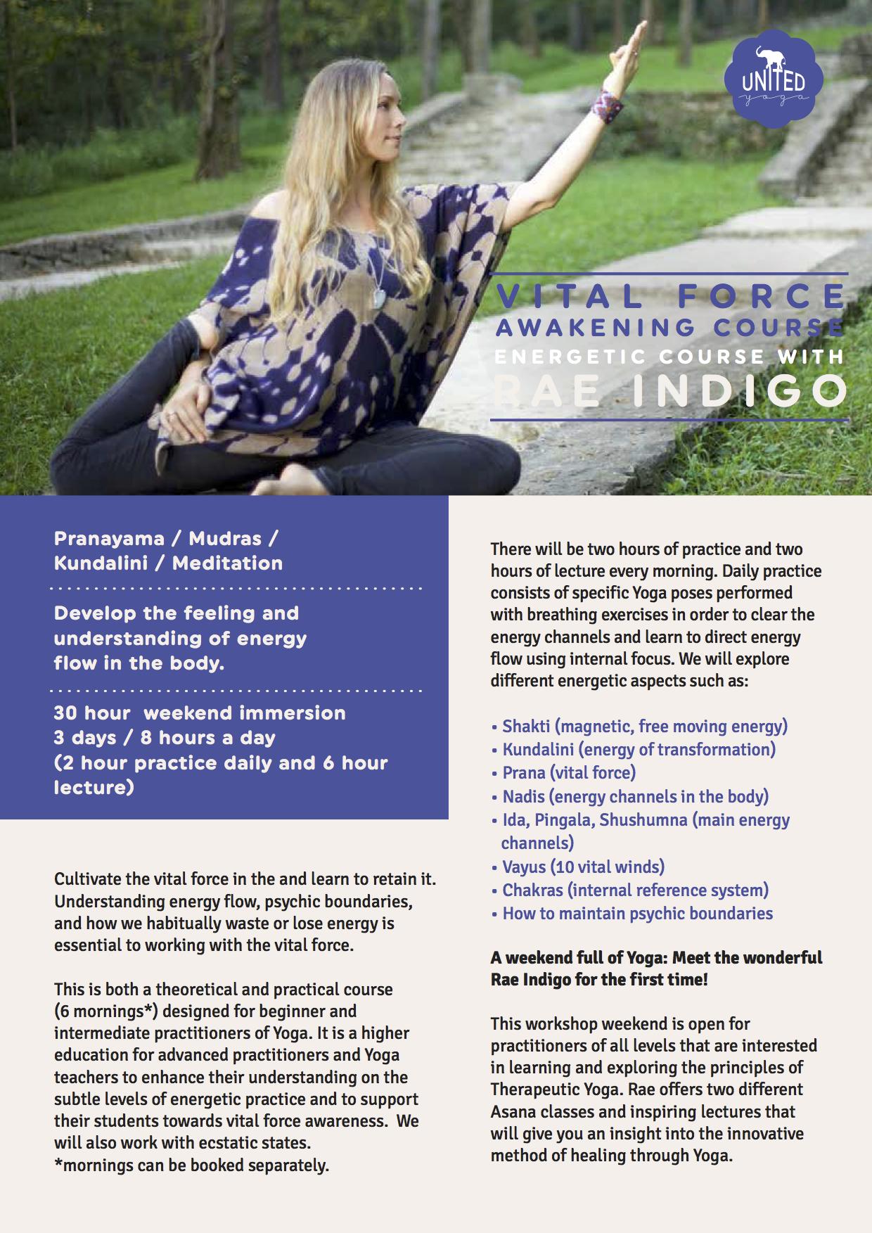 Energetic Awakening Course.png