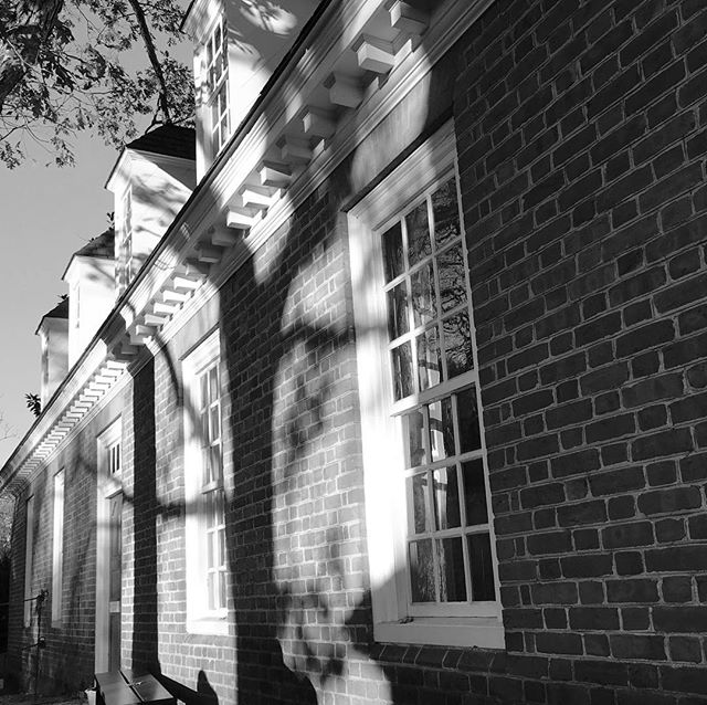 Shadows as the sun sets.⠀ .⠀ .⠀ .⠀ #shadows #travel #sunset #trees #colonialwilliamsburg #travel #virginia #governorspalace #autumn #blackandwhitephotography