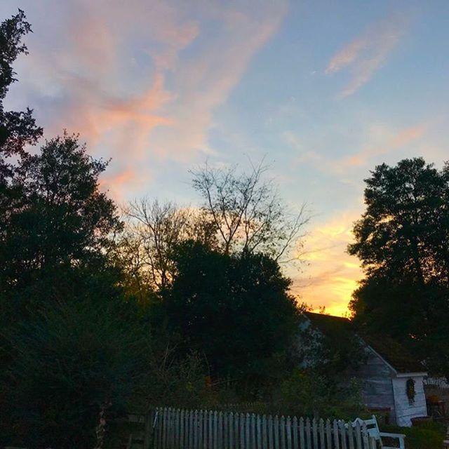 Sunset over the garden at Colonial Williamsburg.⠀ .⠀ .⠀ .⠀ #sunset #colonialwilliamsburg #virginia #travel #evening #nature #clouds #trees #yellowandbluesandoranges #goldenhue #relaxing #garden
