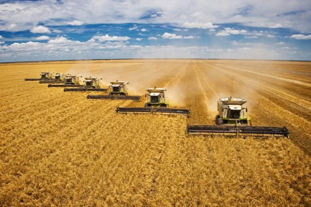 Pre-Harvest