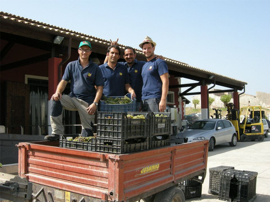 The dudes at Marabino farm organically and ferment spontaneously, the way we like it!.jpg