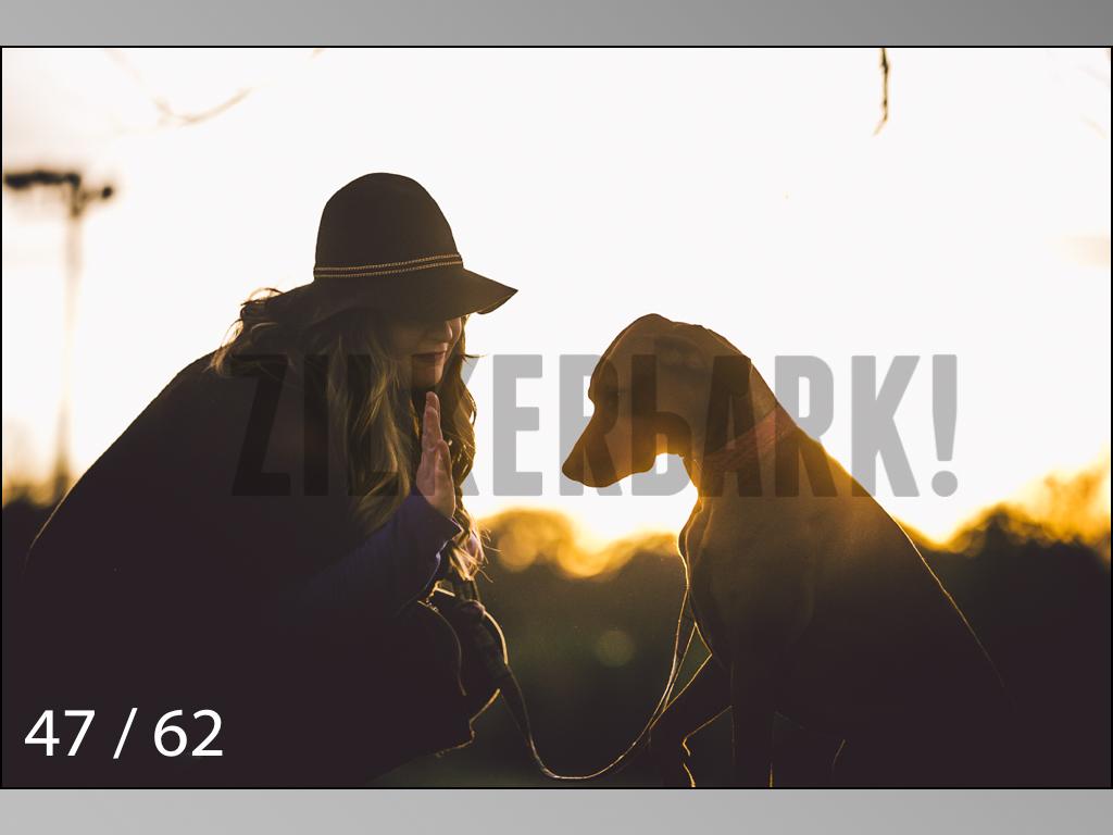 Ridgebacks Web Preview-47.jpg