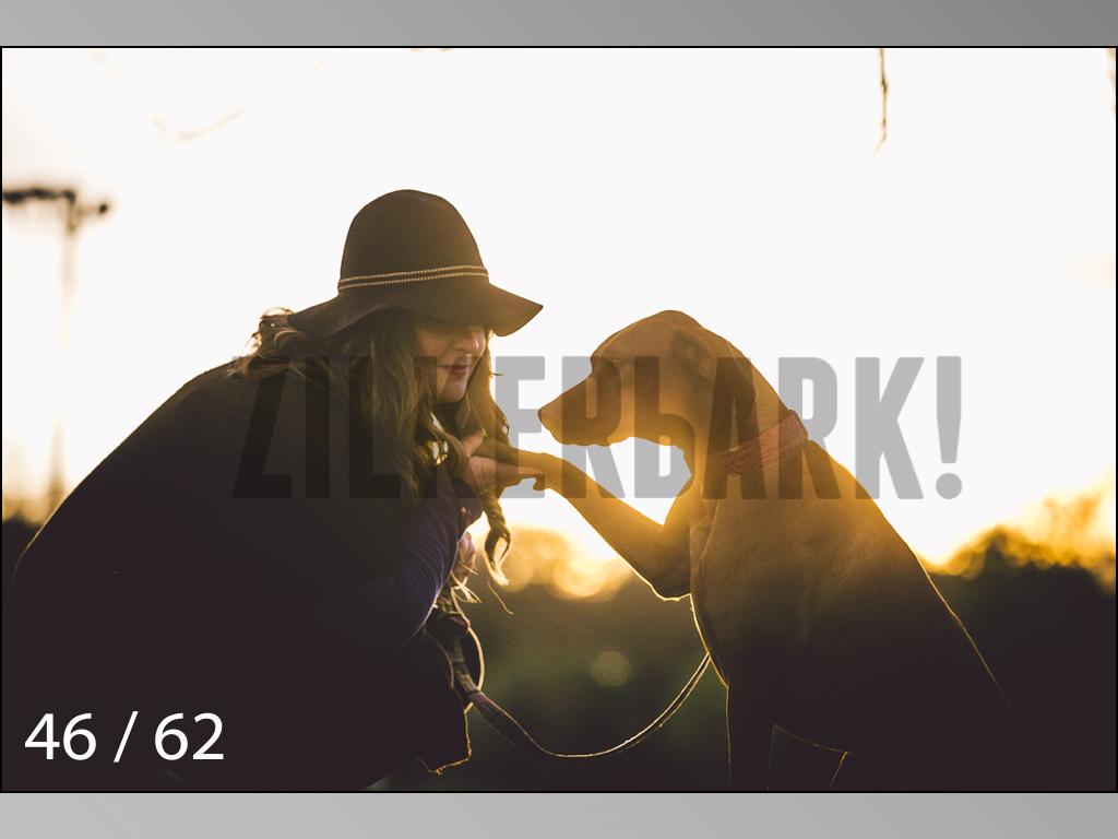 Ridgebacks Web Preview-46.jpg
