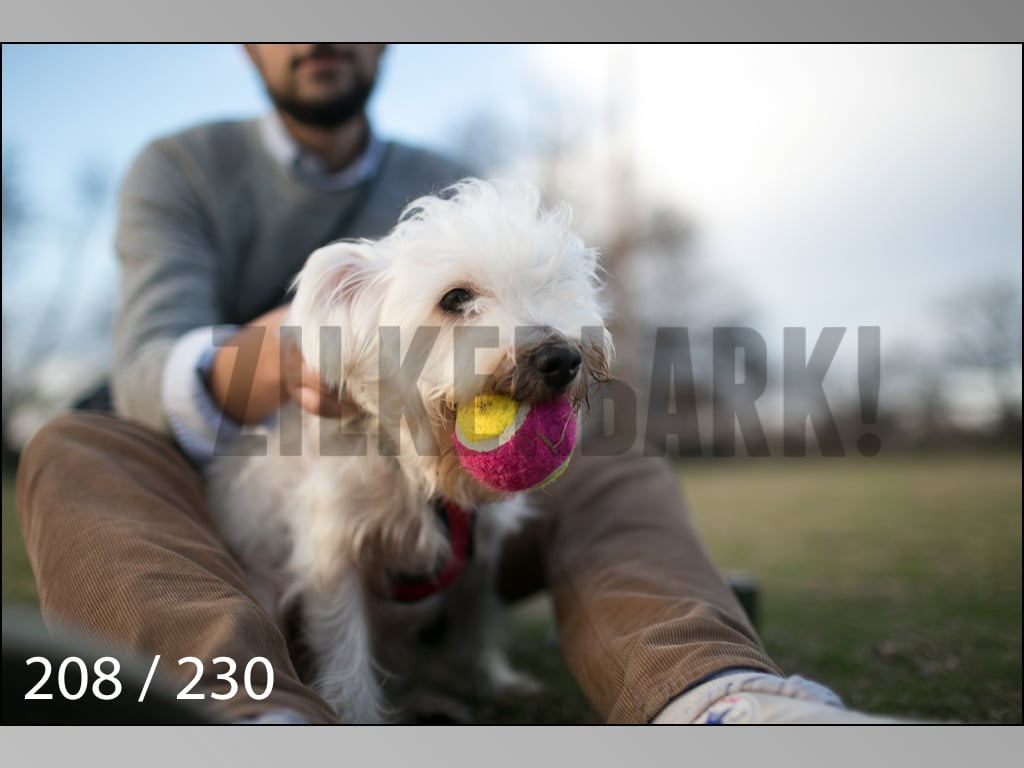 December Photos-208.jpg