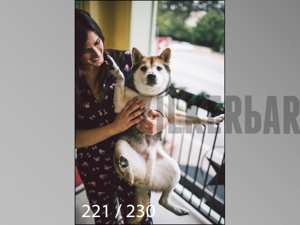 December Photos-221.jpg