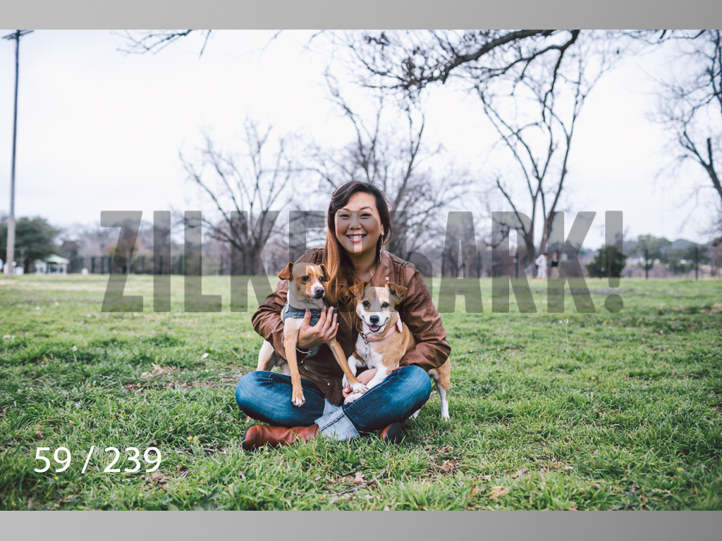 2.20 Dogs-059.jpg