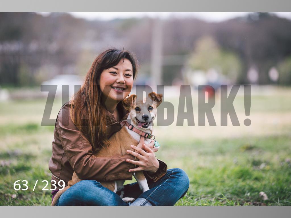 2.20 Dogs-063.jpg