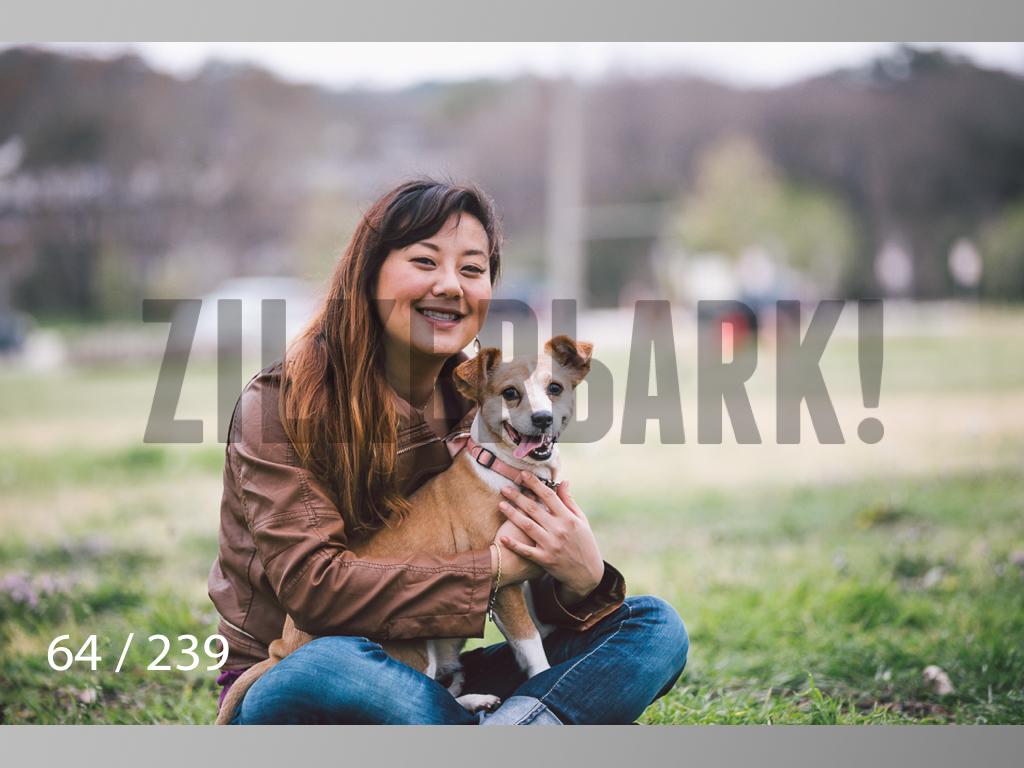 2.20 Dogs-064.jpg
