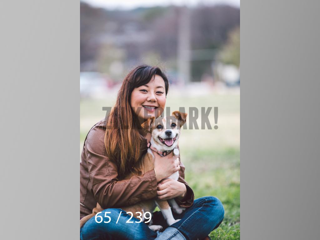2.20 Dogs-065.jpg