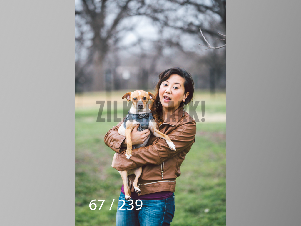 2.20 Dogs-067.jpg