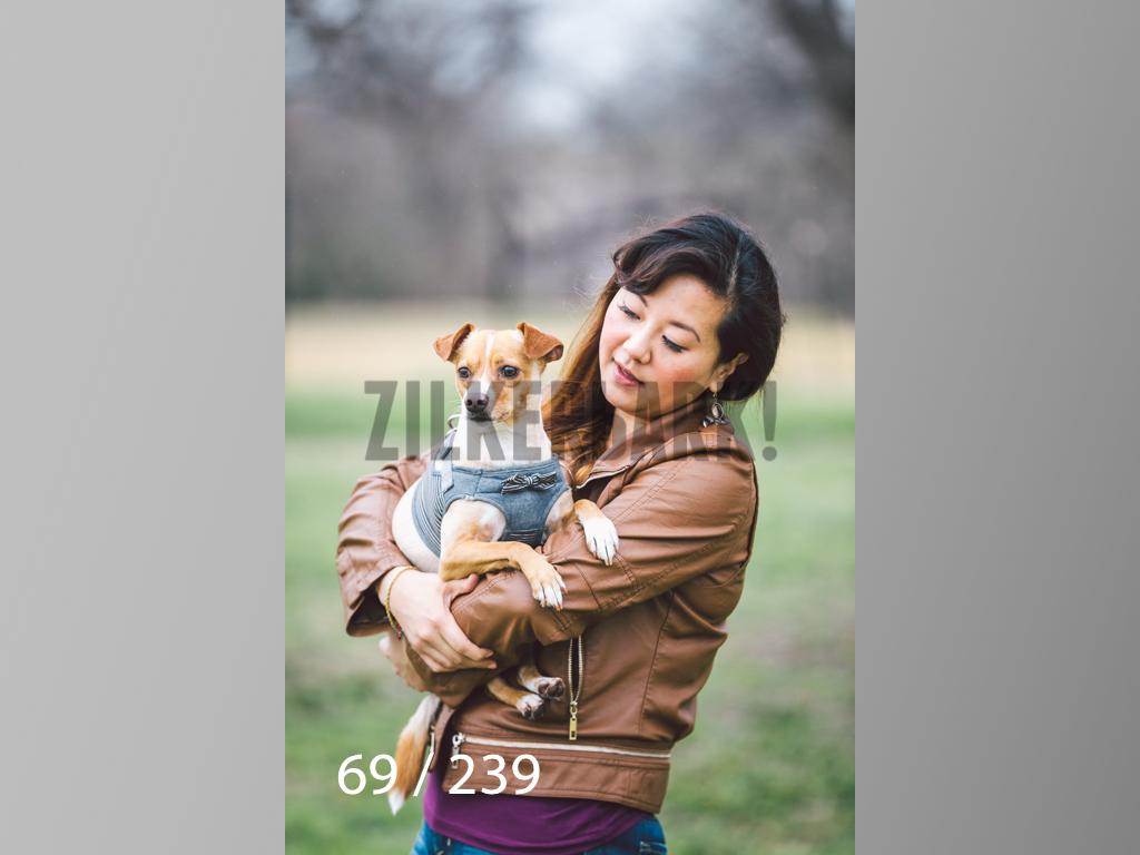 2.20 Dogs-069.jpg