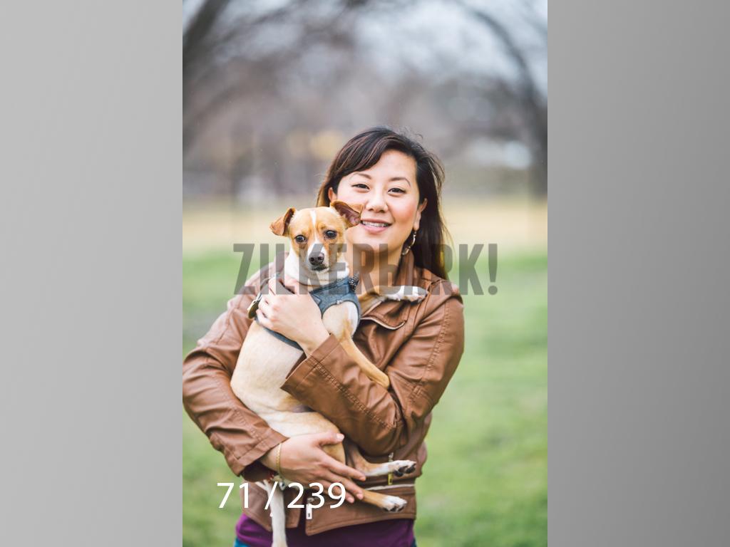 2.20 Dogs-071.jpg