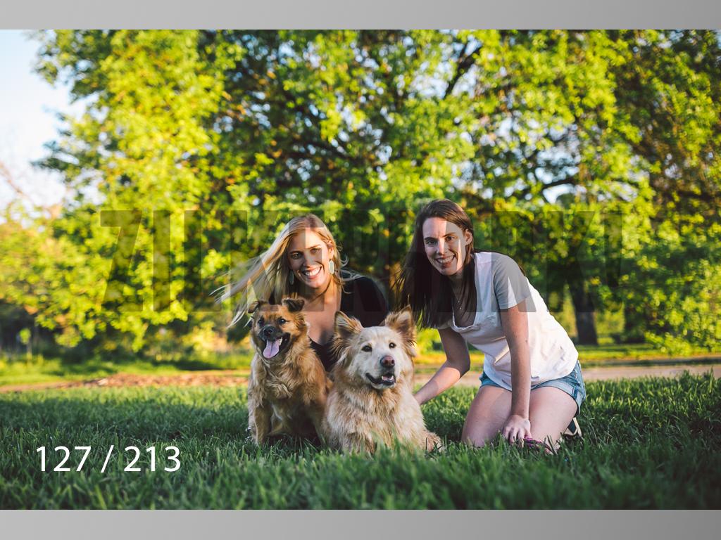Dogs Rest WM-127.jpg
