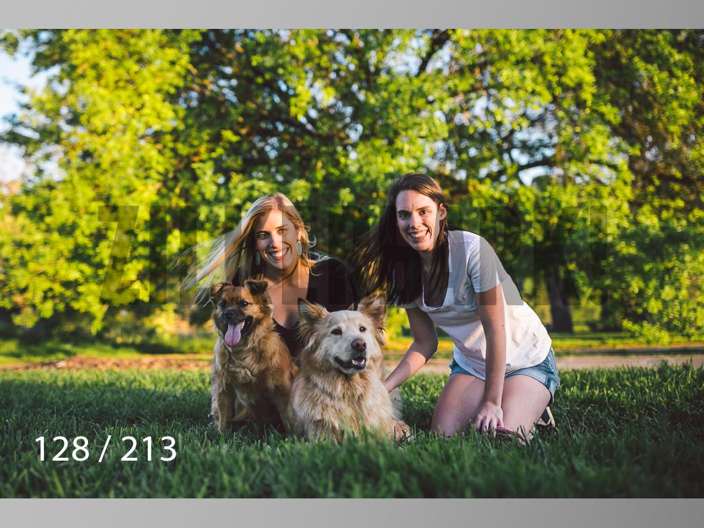 Dogs Rest WM-128.jpg