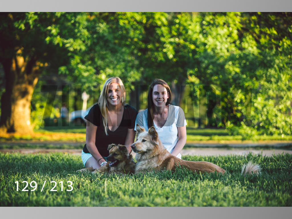 Dogs Rest WM-129.jpg