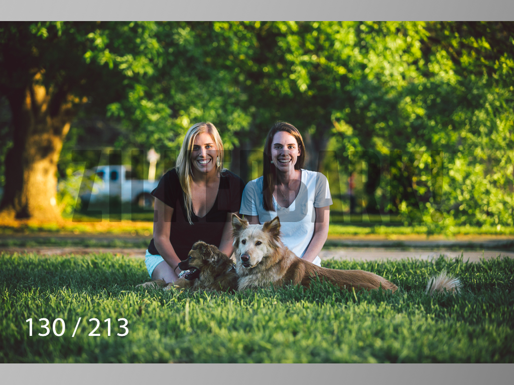 Dogs Rest WM-130.jpg