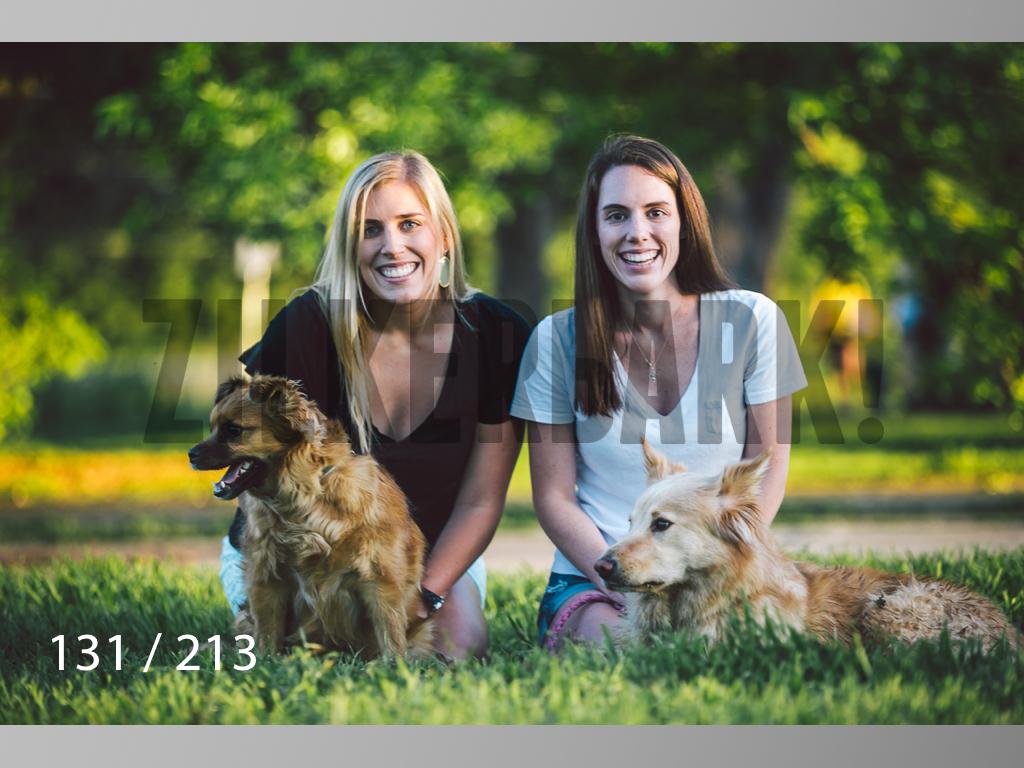 Dogs Rest WM-131.jpg
