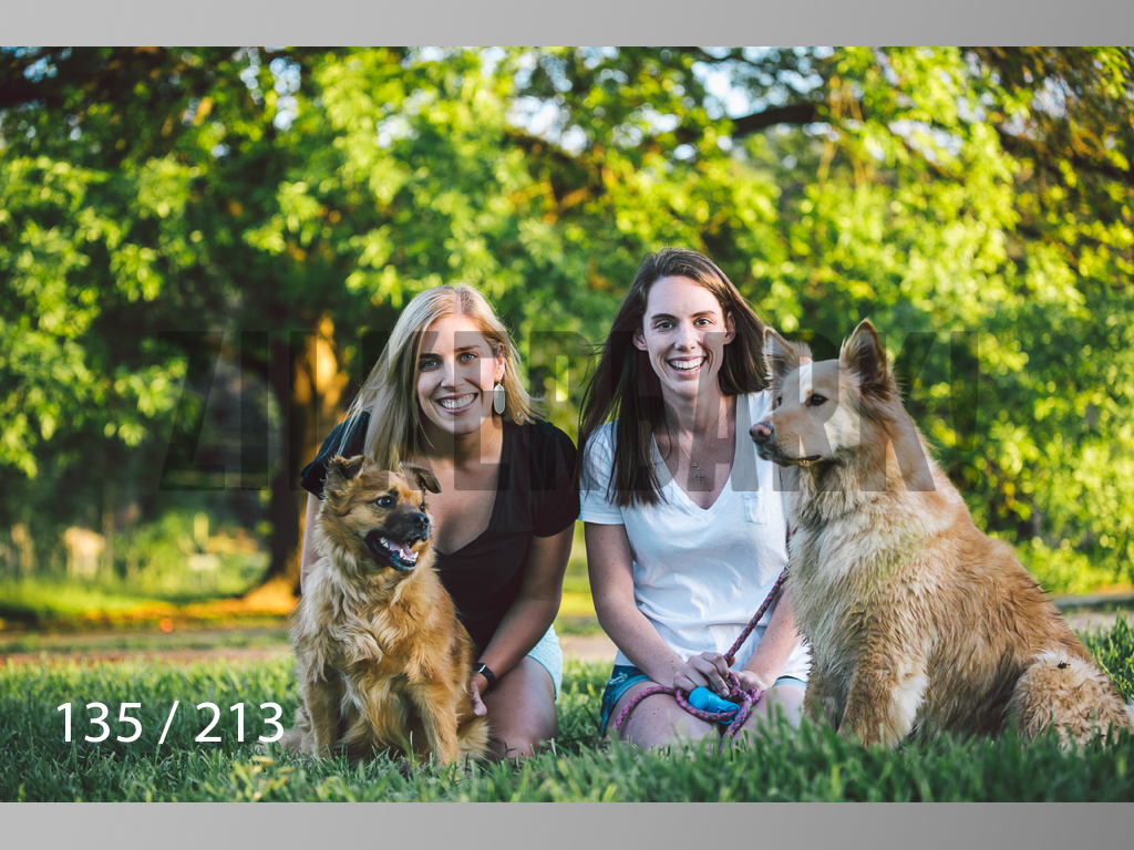 Dogs Rest WM-135.jpg