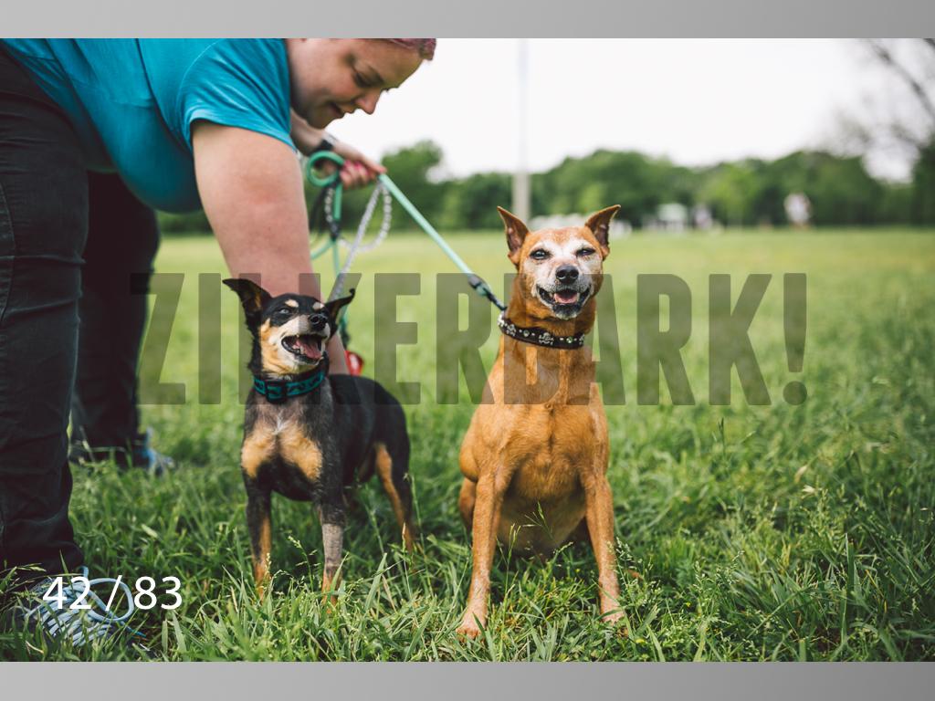 Rocky and Rusty-42.jpg