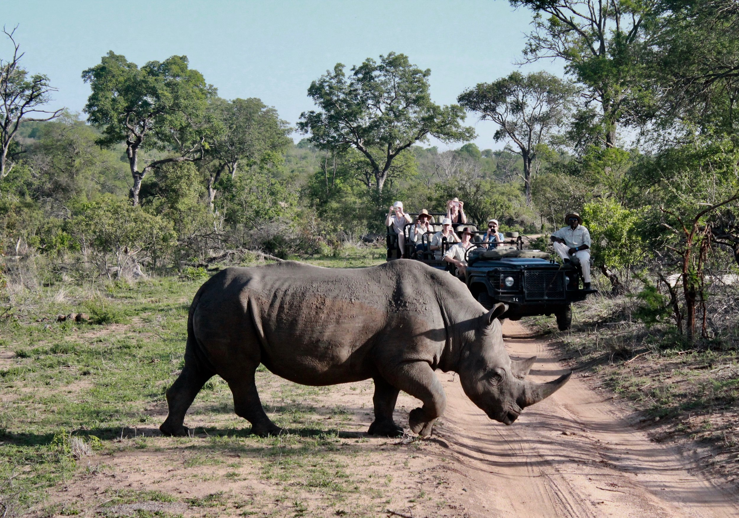 Over and Above Africa first anti-poaching research trip to South Africa - photo by kind permission of Kerry David