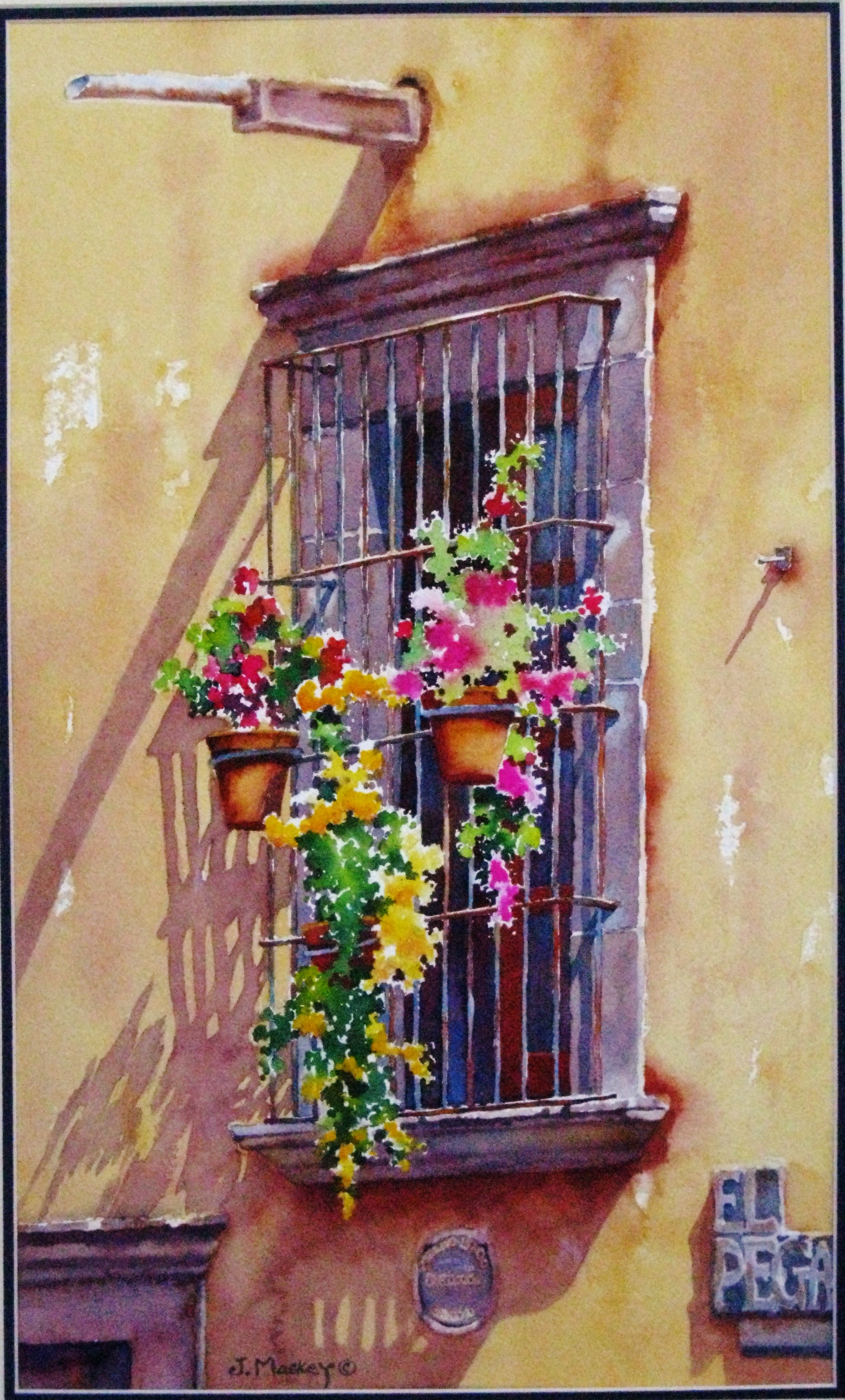 flowering window.JPG