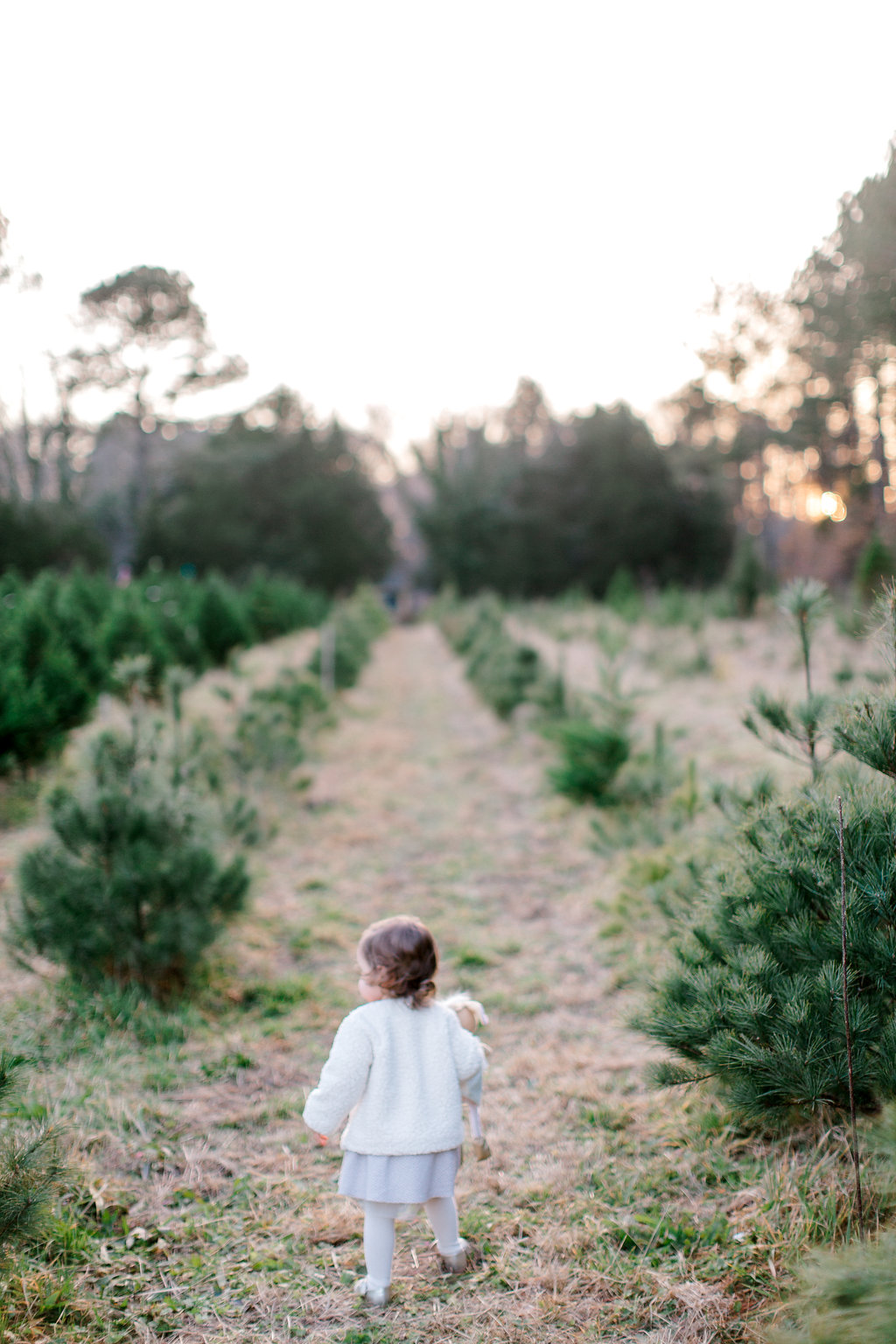 NikkiSanterrePhotography_ChristmasTreeFarmFamilySession_Hoffmeister-83.jpg