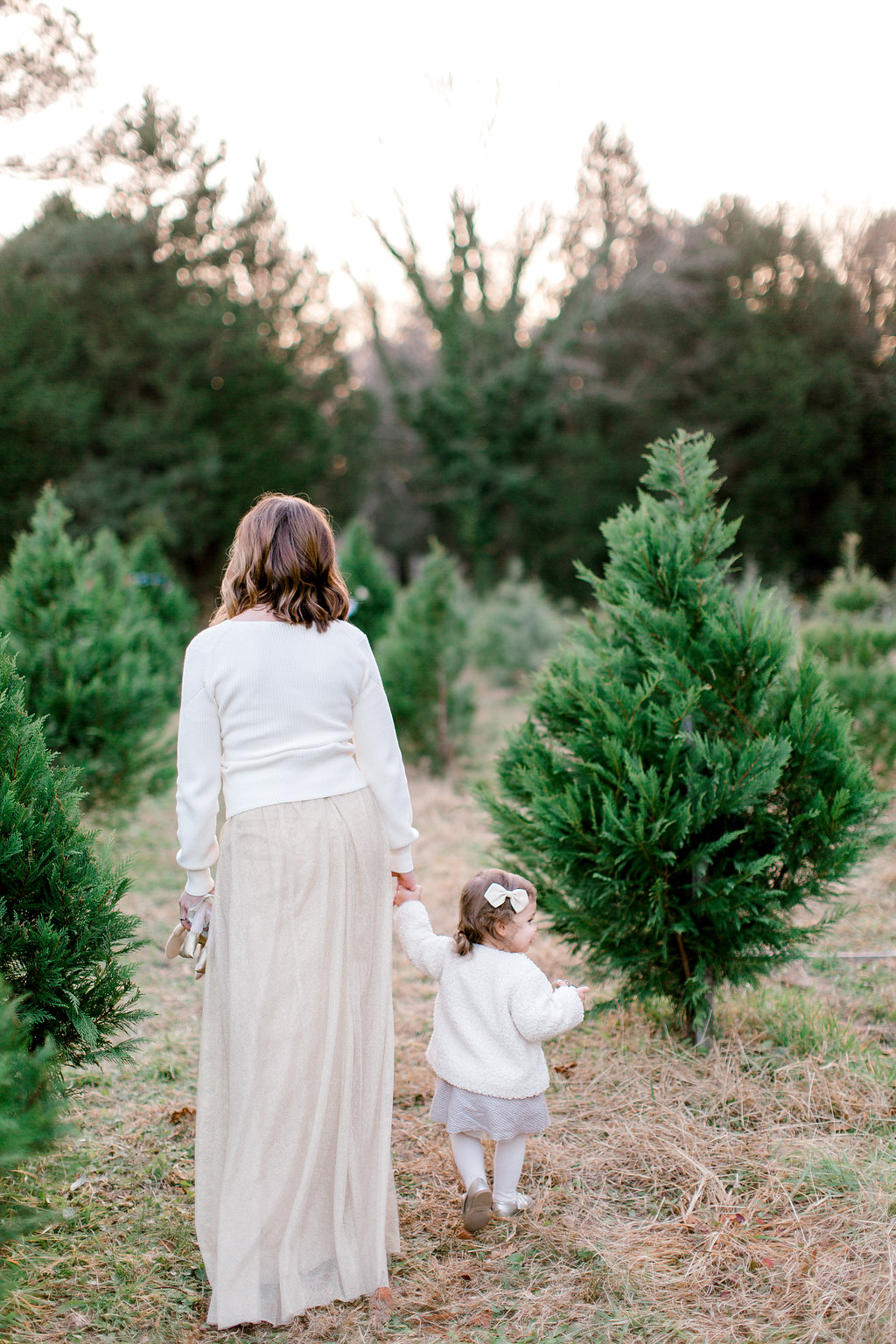NikkiSanterrePhotography_ChristmasTreeFarmFamilySession_Hoffmeister-110.jpg