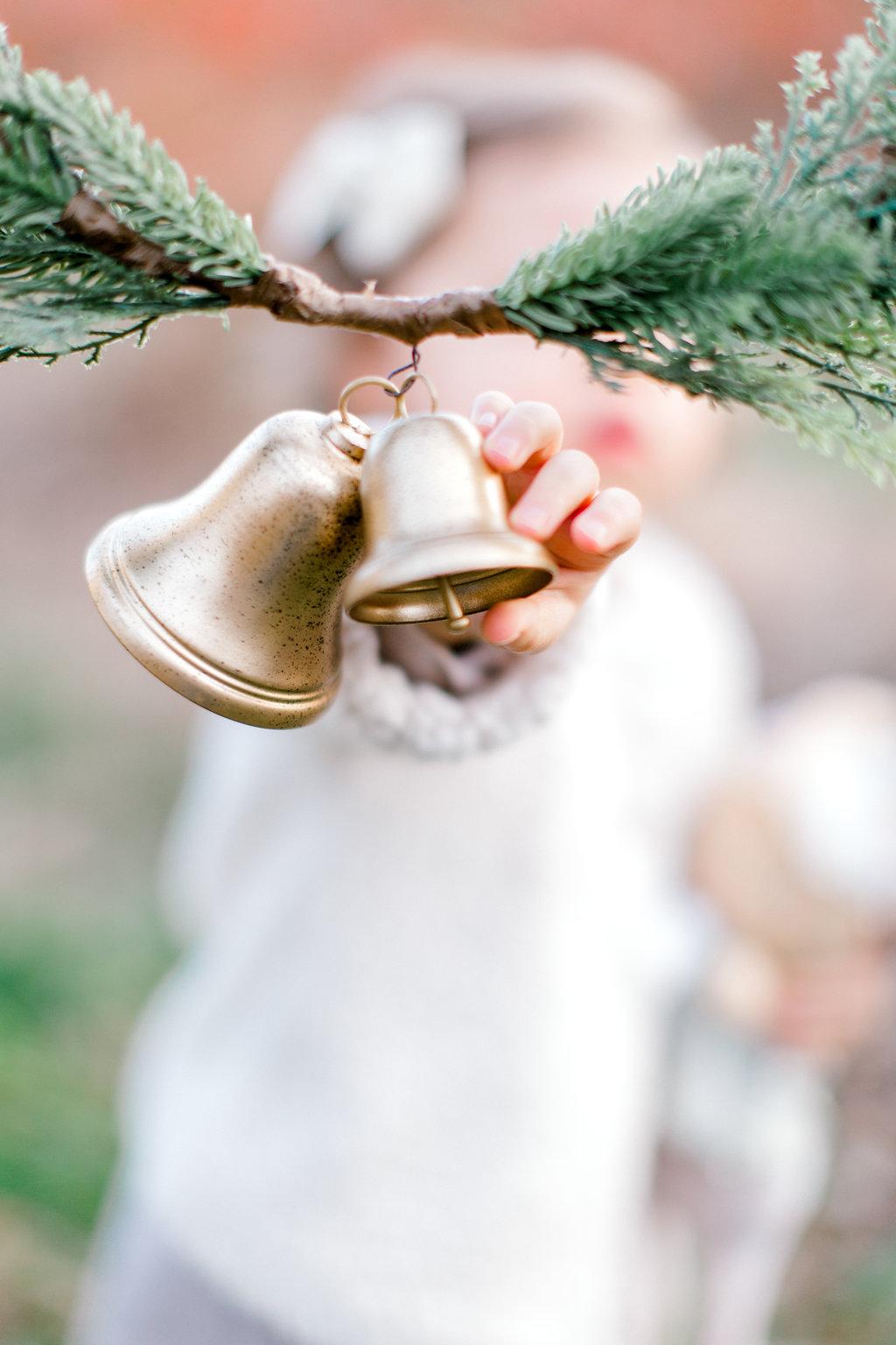 NikkiSanterrePhotography_ChristmasTreeFarmFamilySession_Hoffmeister-55.jpg
