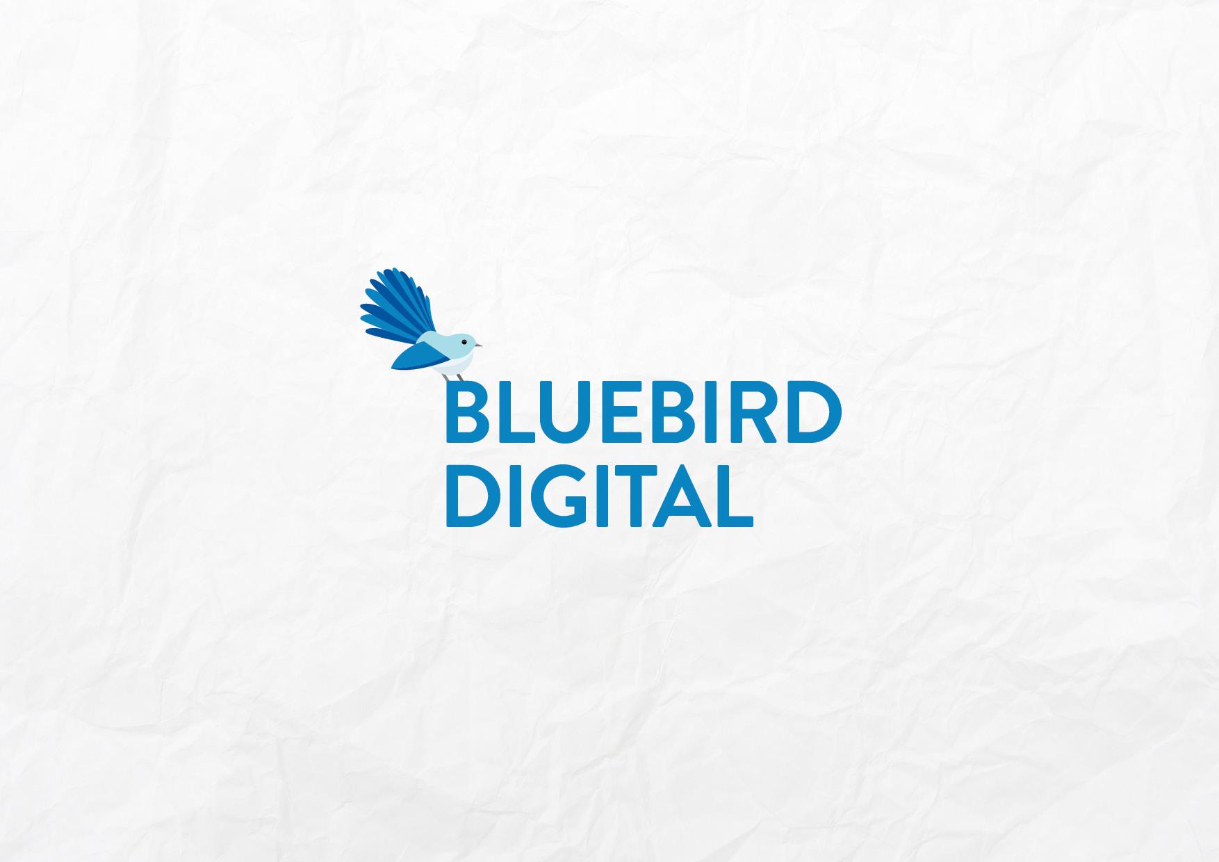 Rochelle-Vranjes-Bluebird-Digital-Branding-Guidelines.jpg
