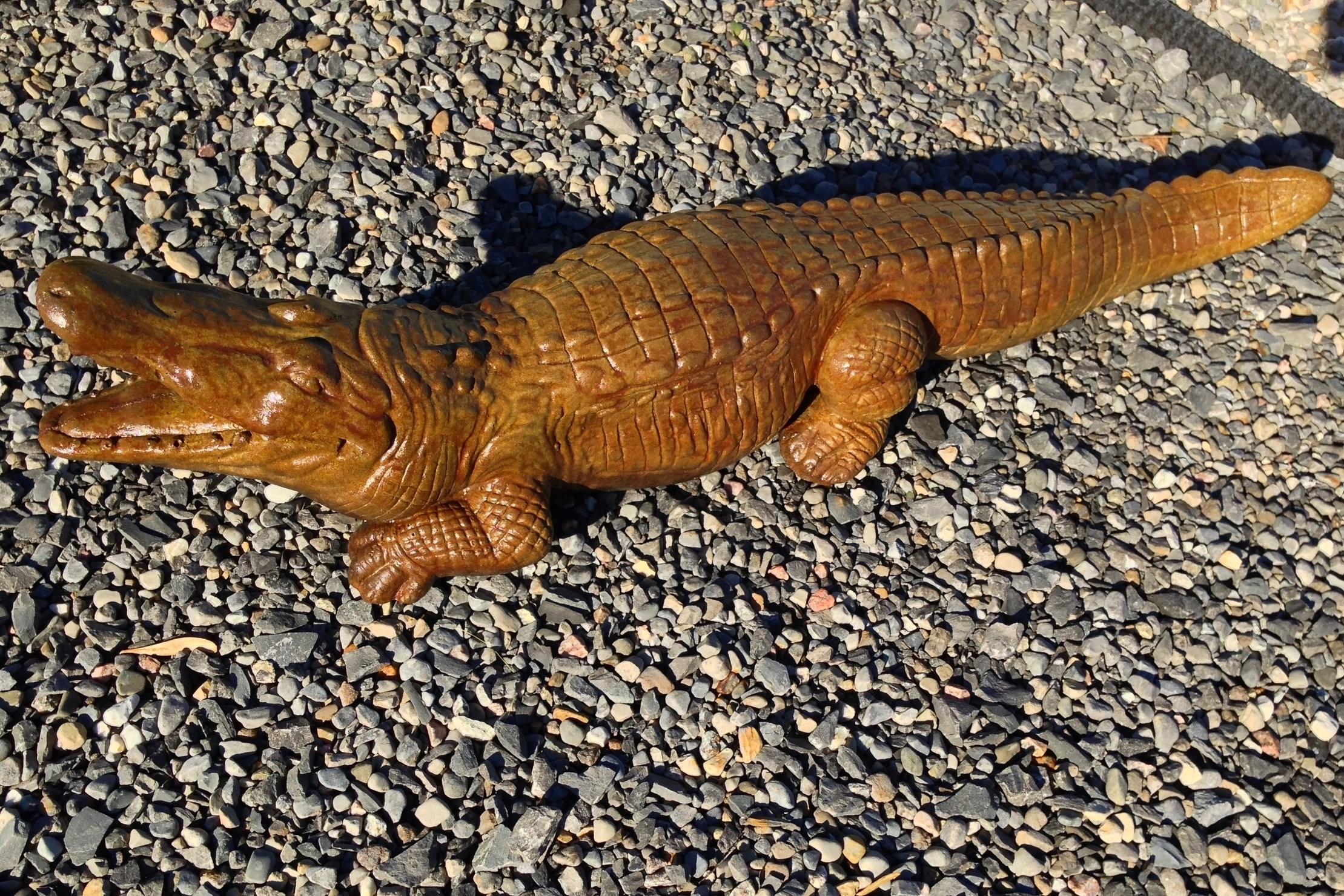 Alligator $50