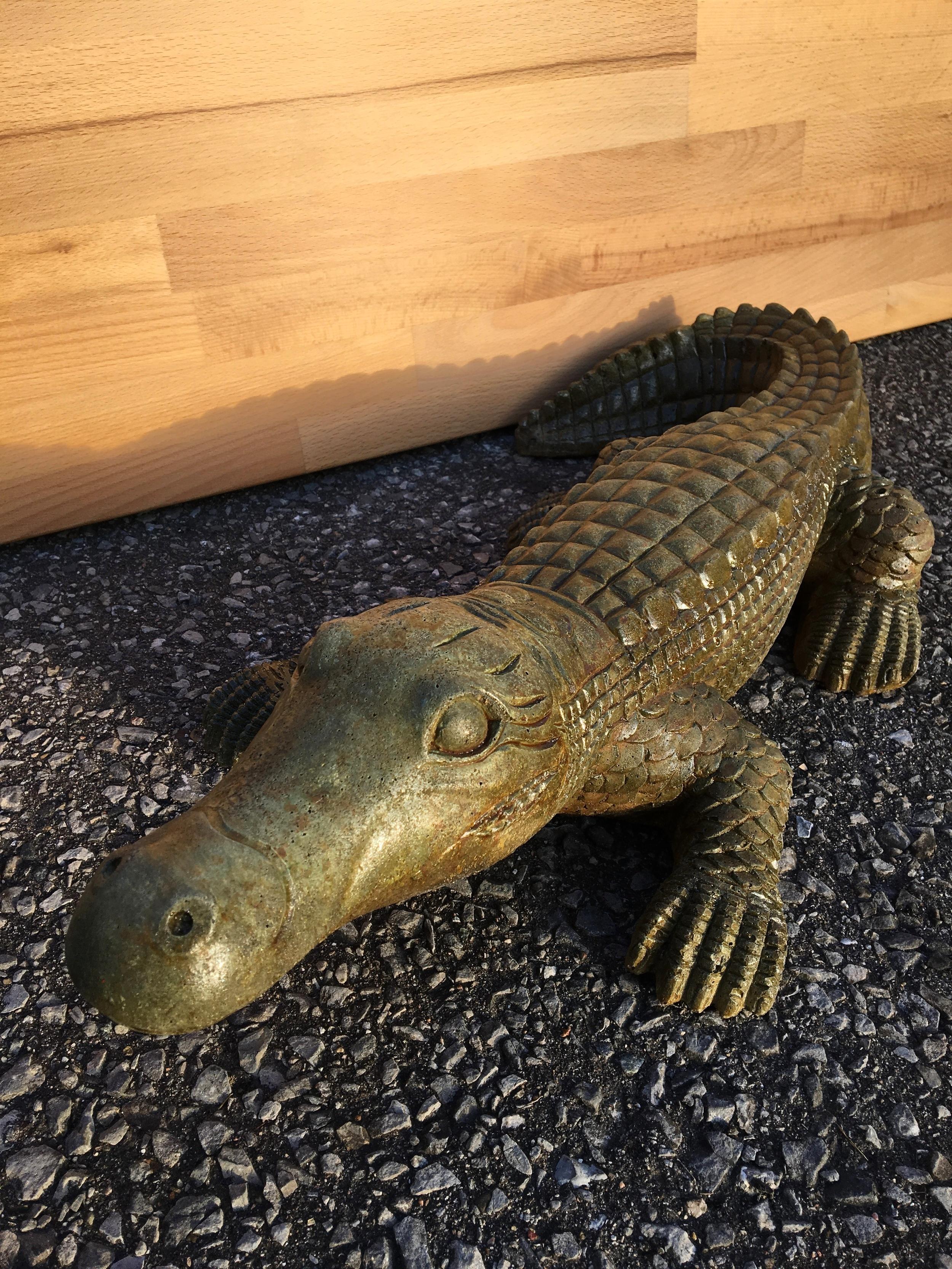 Crocodile $50
