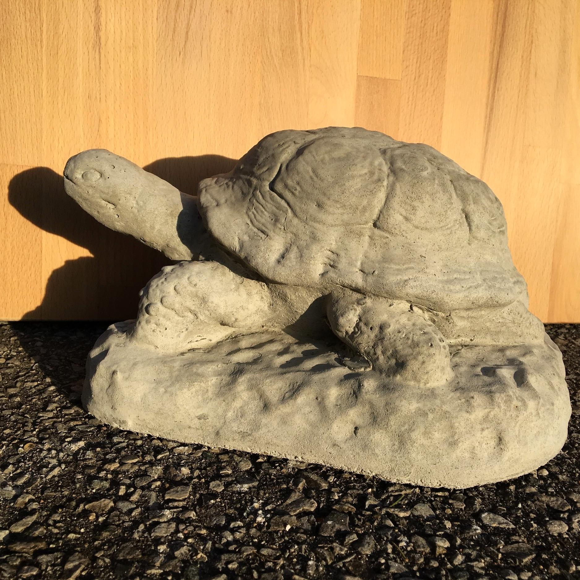 Mud Turtle $32