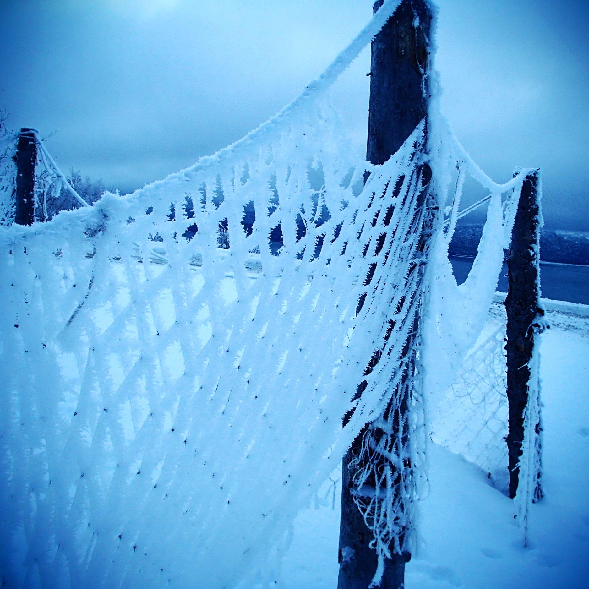 A frozen hoar frost fence in Homer Alaska