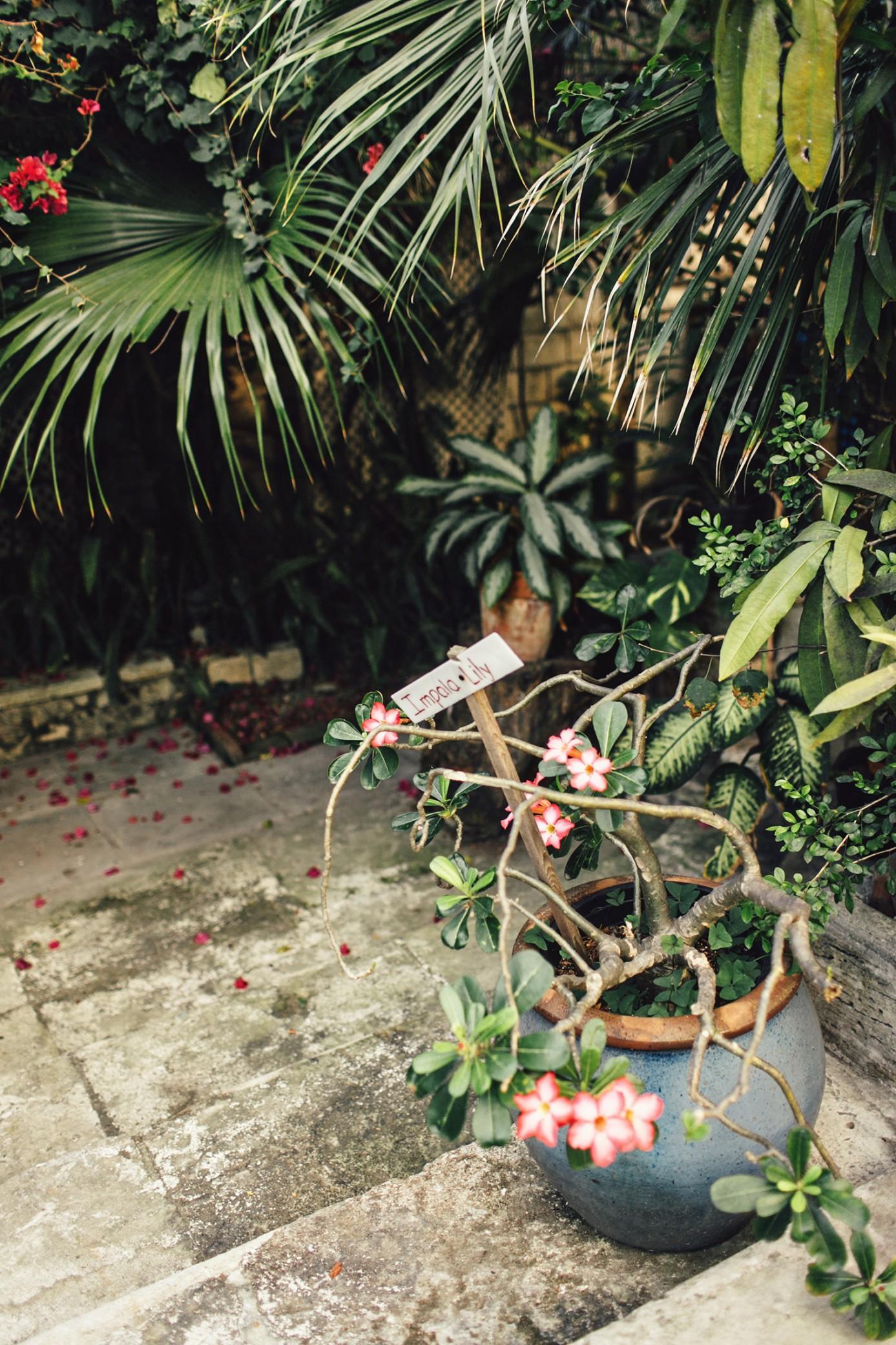 NASSAU-bahamas-destination-wedding-0111.JPG