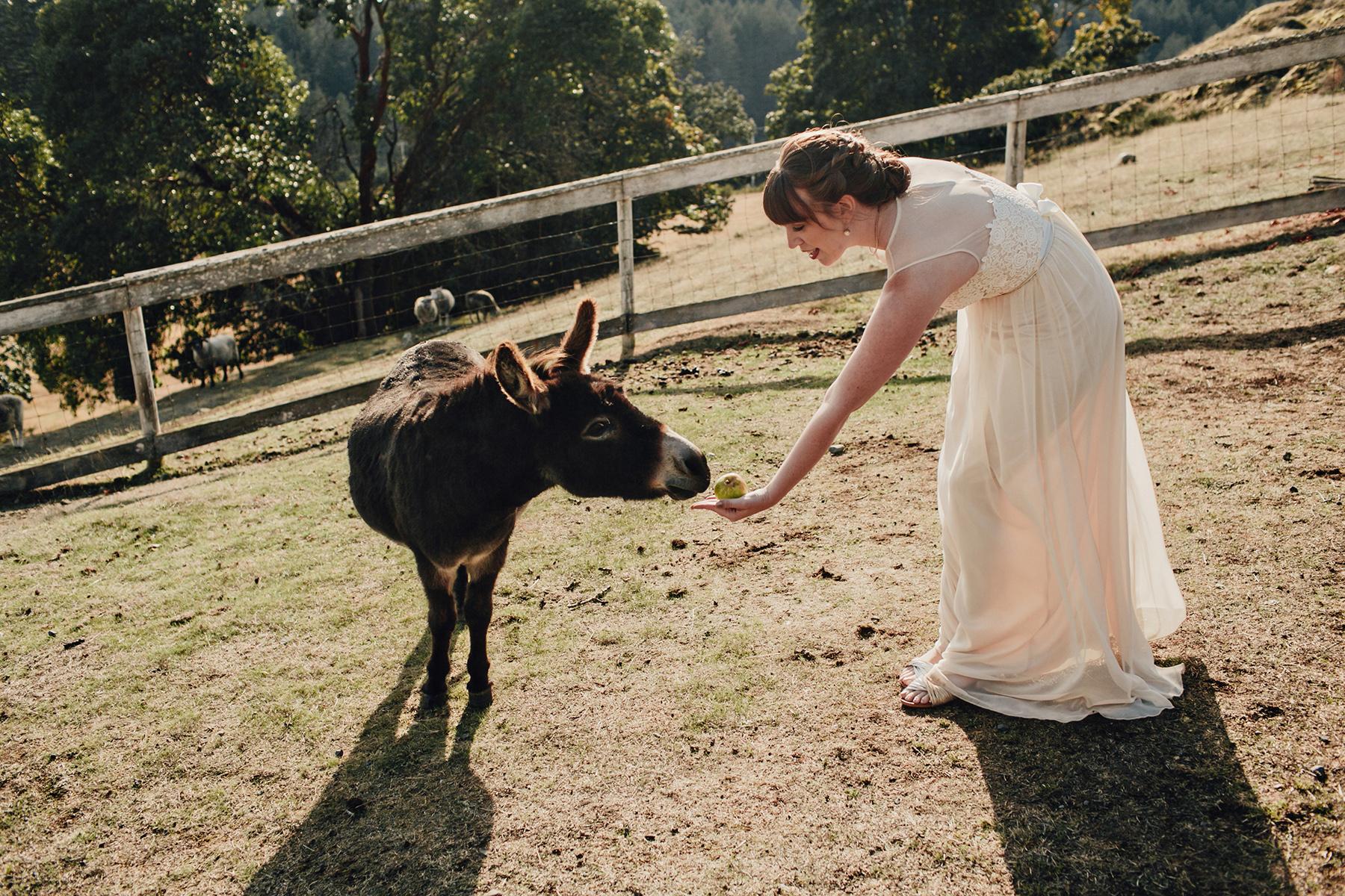 Glenrosa-Farms-Wedding-Photos-0216.jpg