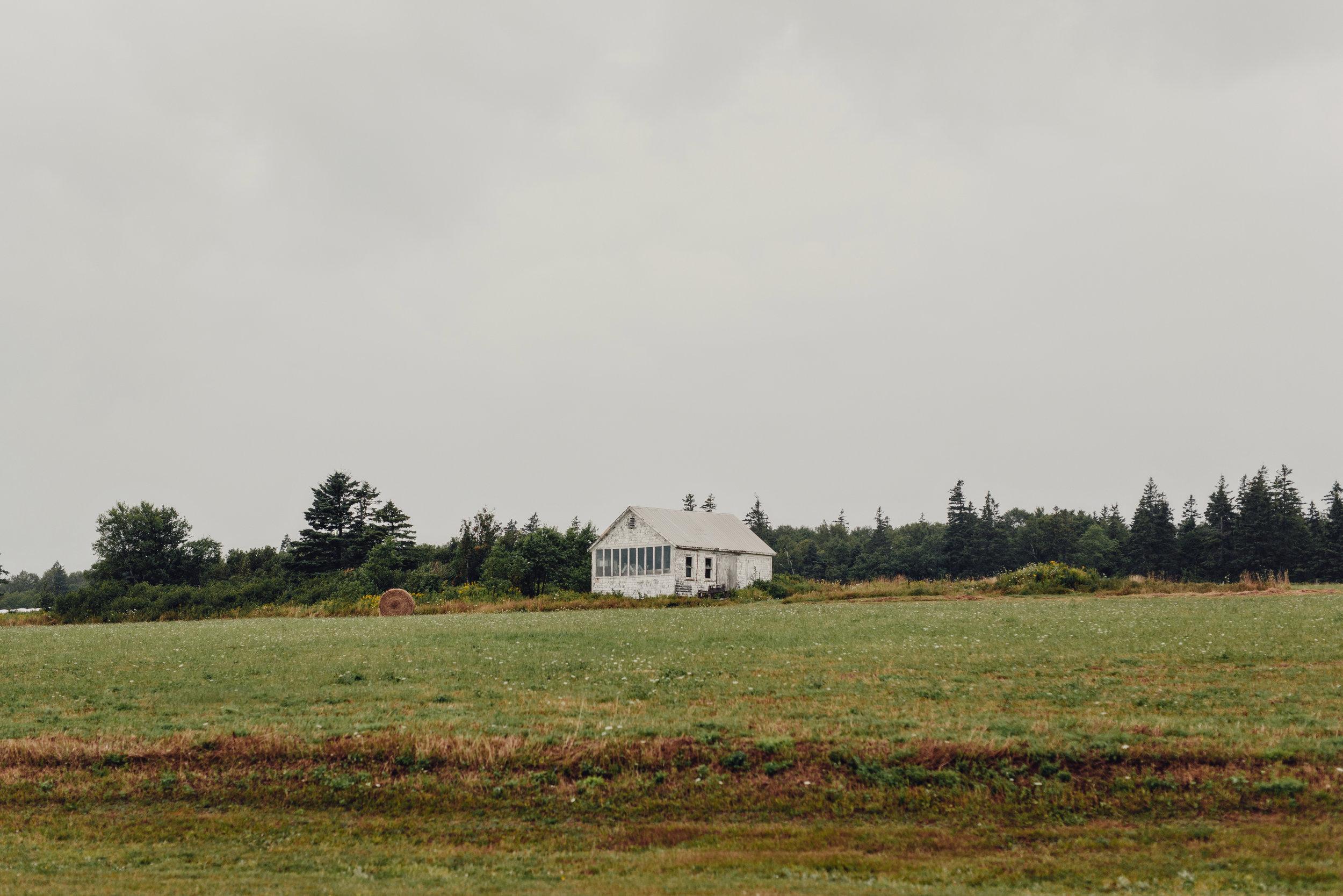 prince-edward-island-cottage-wedding-photos-0038.JPG