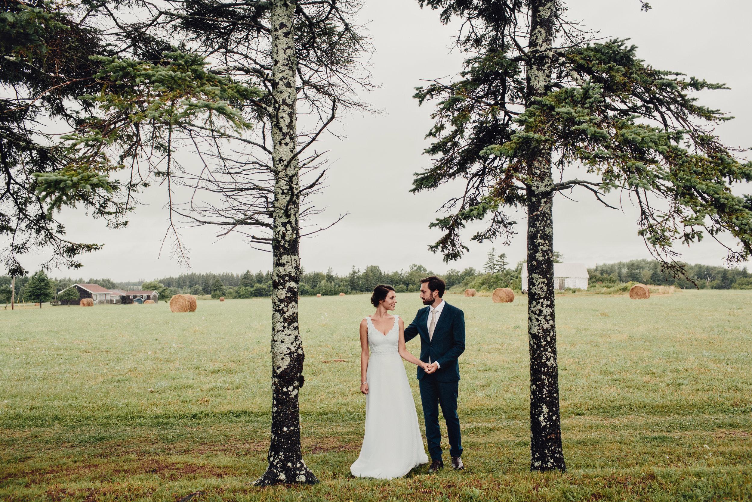 prince-edward-island-cottage-wedding-photos-0047.JPG